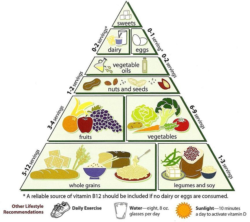 Healthy Eating Advice for Beginners
